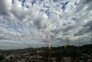 Nublado-10-05-2014
