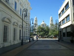 Area de la catedral.-